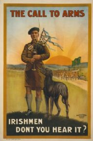 Vintage the Call to Arms, Irishmen don't you hear it? Poster